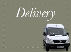 delivery cta