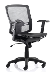 DynamicPalma Black Mesh Seat And Back Operator Task Chair With Height Adjustable ArmsBlack mesh seat and back with height adjustable arms and height adjustable lumbar support with lockable tilt mechanism and gas lift height adjustment.
